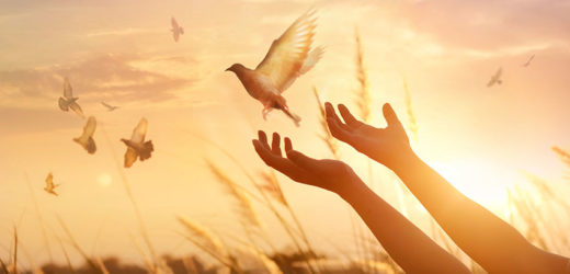 Always Start Your Day with this Powerful Morning Prayer to the Holy Spirit
